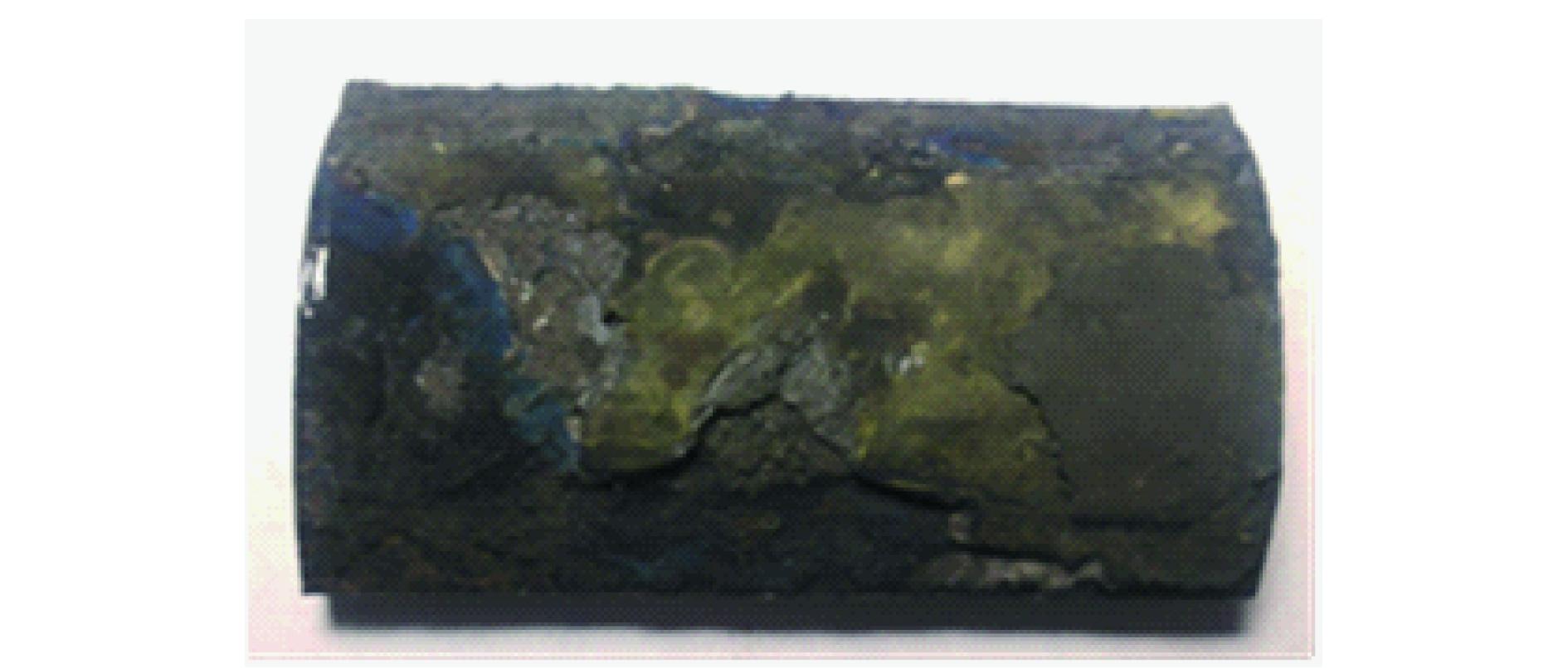 电厂锅炉水冷壁高温腐蚀成因与对策研究